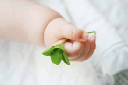 【不妊/妊活】一番難しいのは、いつまでどこまで続けるかということ。人工授精は…